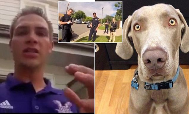 Dramatic Video: 'You Guys Killed My Dog! He Was My Best Friend!'
