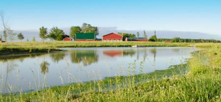 tyner_pond_farm