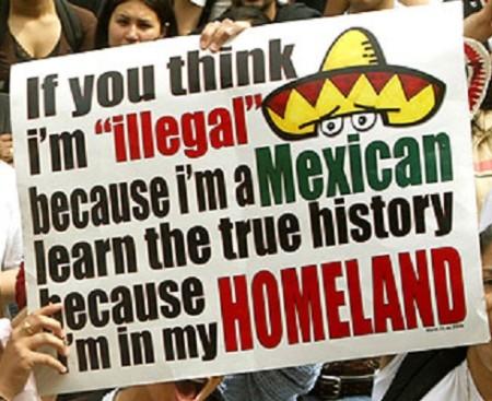 illegal_merxicans_arrogant