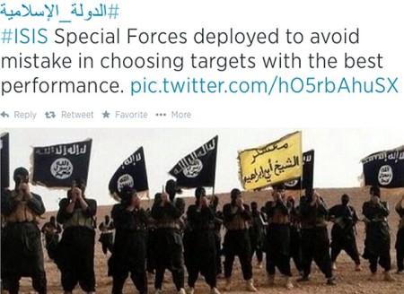 ISIS 1crop.jpg