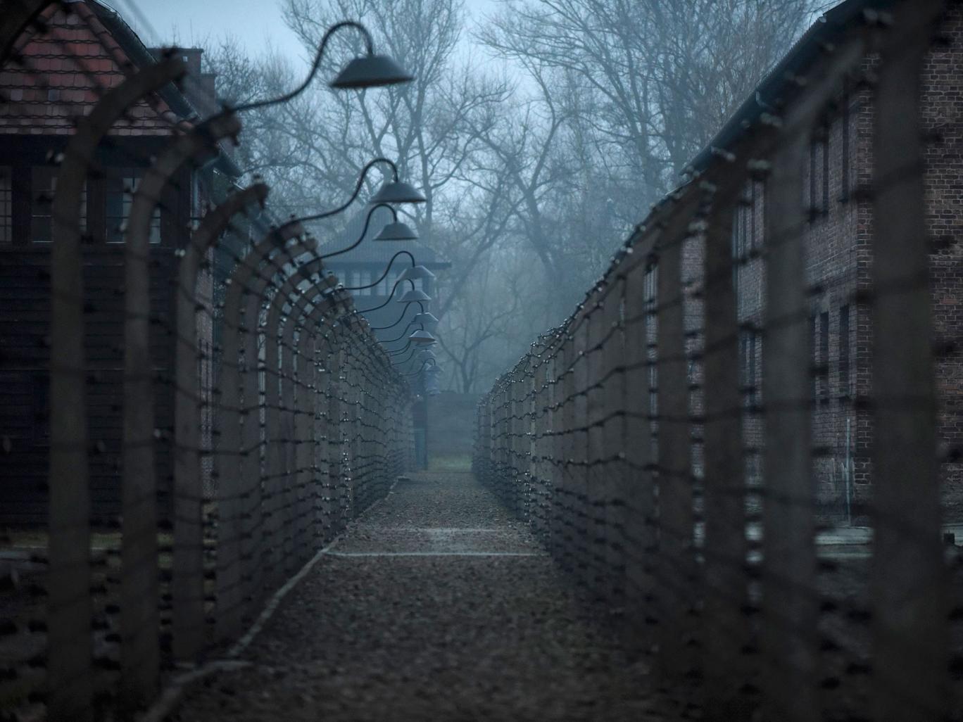 Auschwitz-16