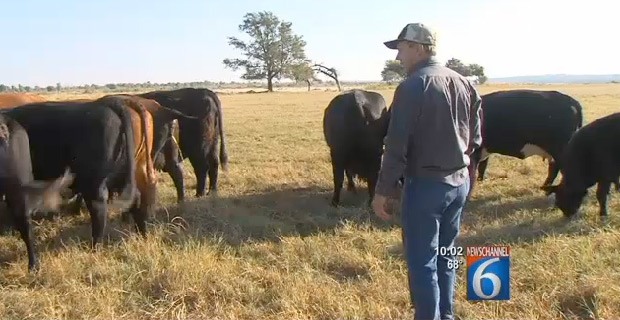 Texas Rancher Fights Back Against BLM Land Grab 'Your Deed From 1941 Is Worthless'
