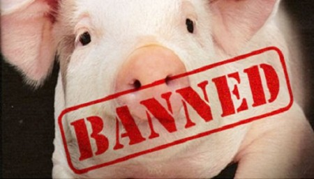 pig-banned