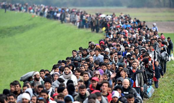 migrants-443697