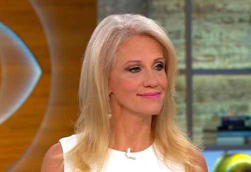 Conway: We're Seeing 'Hysterical' Democratic Party 'Unravel In Front Of Our Eyes' (Video)