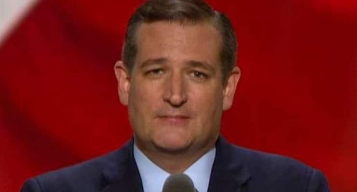 Ted Cruz Busts Elon Musk For Flying Private Jet While Lecturing Trump On Global Warming