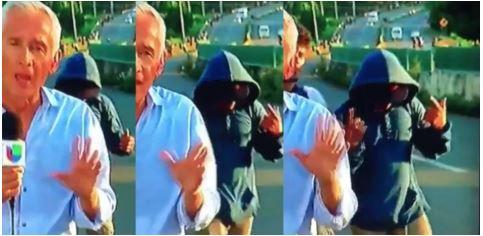 Migrant Caravan Member Flashes Gang Sign As Univision Reporter Tells Fox News' Viewers Caravan Is Harmless (Video)