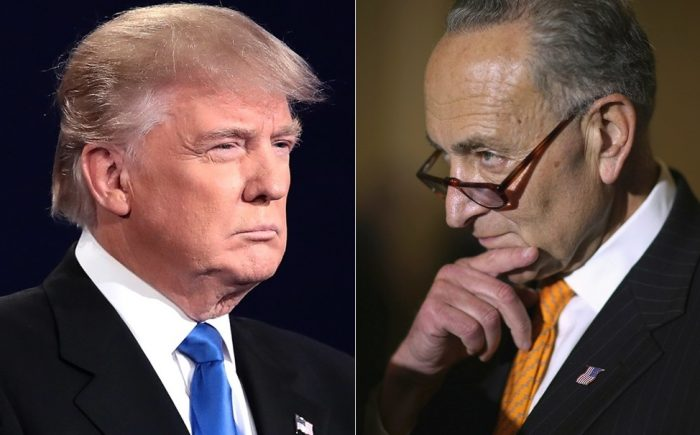 Chuck Schumer: 'Trump Is Not Going To Get The Wall In Any Form' (Video)