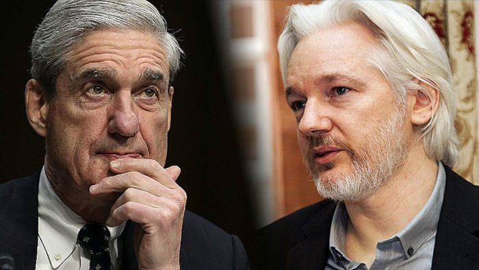 US Intelligence Veterans Say Assange Can Answer Why Mueller Failed to 'Prove Russian Hacking'
