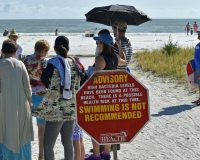 Nothing Like A Day At The Beach: Sun, Surf, Feces And Flesh-Eating Bacteria