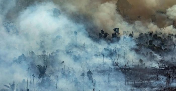 2,000 new fires started in Amazon rainforest 48 hours after ban on burning forest land