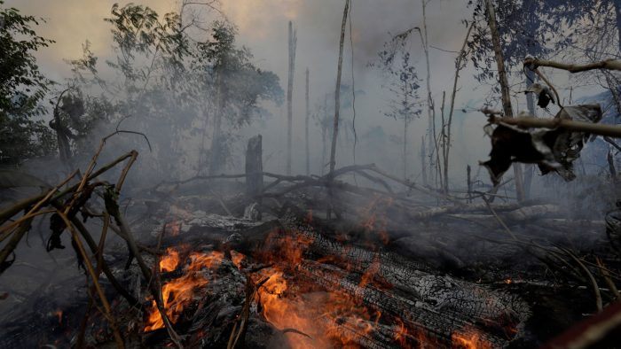 Brazil Bans Land-Clearance Fires For 60 Days, But Is It Too Late?